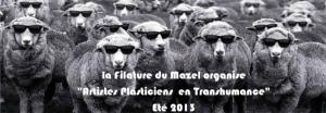 transhumance3