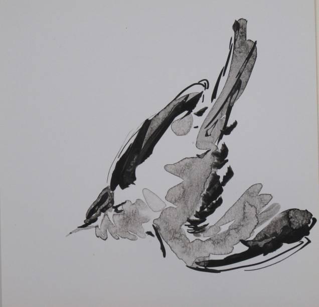 birds-IX