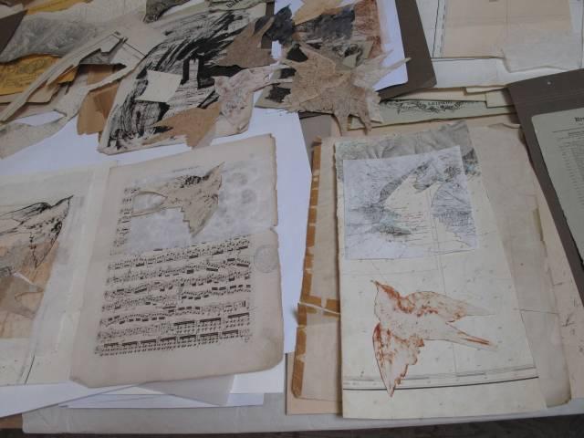 atelier-bird-book