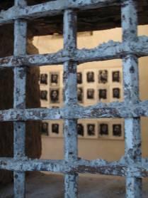 jailbirds-IV