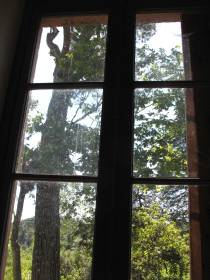 window-III