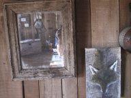 le renard et le miroir
