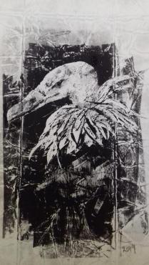 portrait vautour fauve II