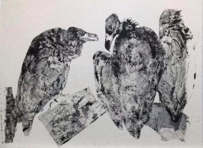 Trois vautours moines